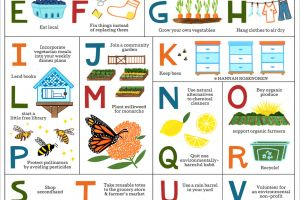 The Eco-Friendly Alphabet featured image
