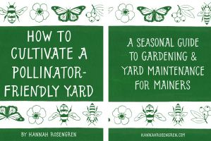 How to Cultivate a Pollinator-Friendly Yard