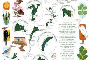 Rachel Carson National Wildlife Refuge Map featured image