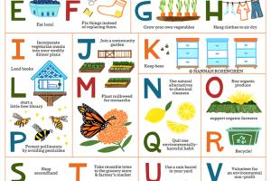 Eco-Friendly Alphabet