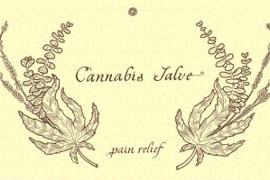 Cannabis Salve Packaging featured image