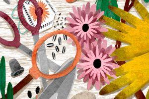 Garden Eye-Spy  featured image