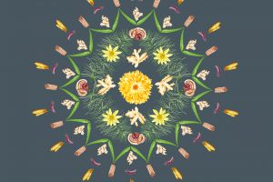 Patterns of Healing  featured image
